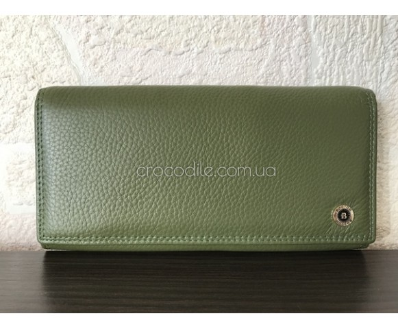 53110_green_olive